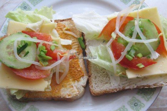 Kanapki z paprykarzem warzywnym lub serkiem, sałątą, ogórkiem, papryką, kiełkami soi i szczypiorkiem
