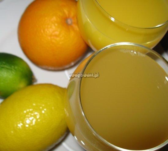 Poncz herbaciany z cytrusami - składniki