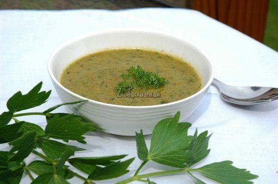 Zupa krem z lubczyka
