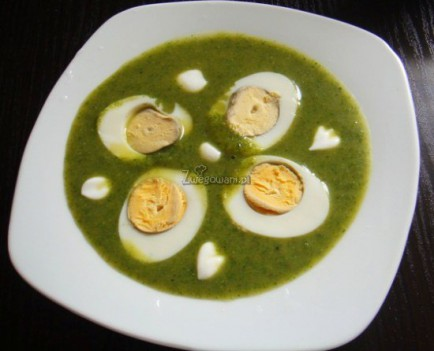 Zupa z pokrzywy